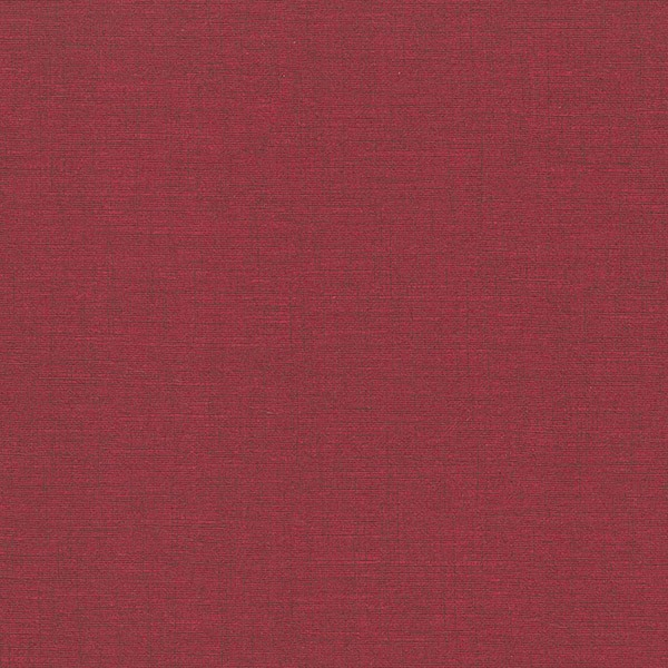 Rdeča barva platnic - Diplomska naloga