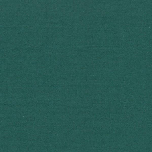 Zelena barva platnic - Diplomska naloga